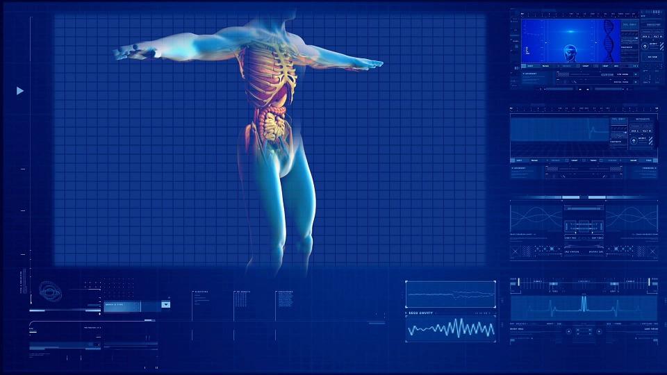 ¿Cómo se mide el funcionamiento de los riñones?