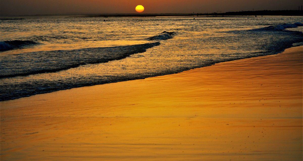 Disfruta de la costa española con ALCER