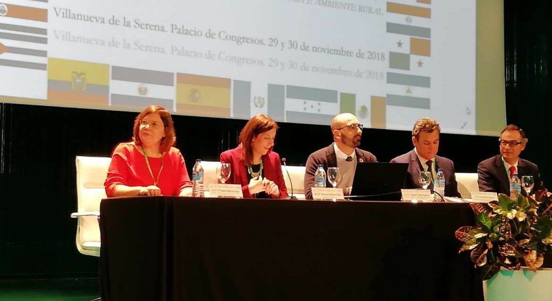 El IV Congreso Iberoamericano sobre Cooperación, Investigación y Discapacidad se celebró este jueves en Villanueva de la Serena