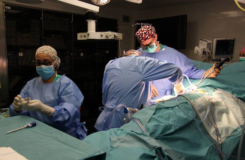 Recibir un riñón de un donante anciano es mejor que seguir en diálisis, según un estudio