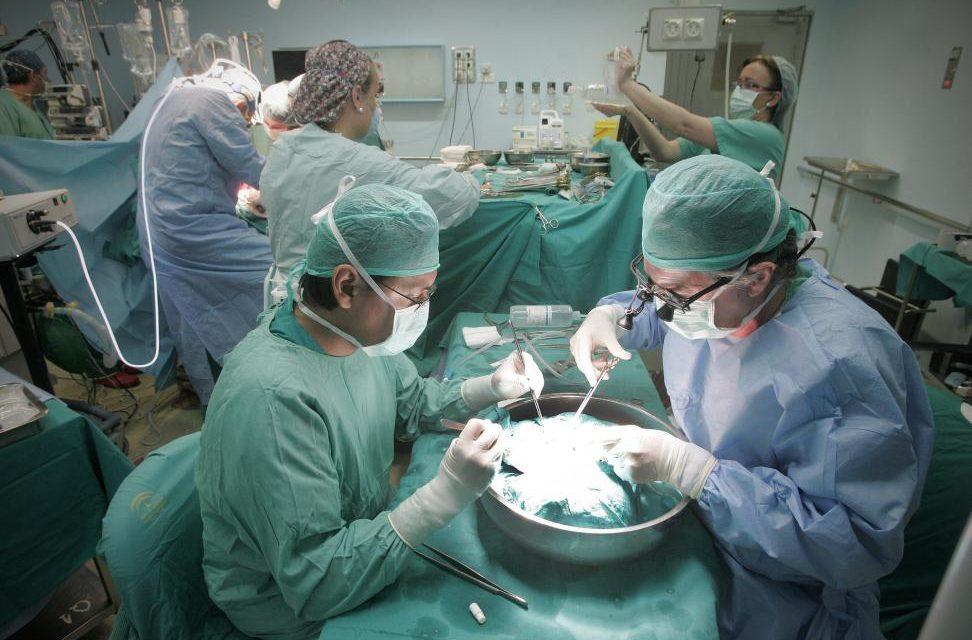 ALCER Castellón pide este mes a Sanidad trasplante renal en Castellón
