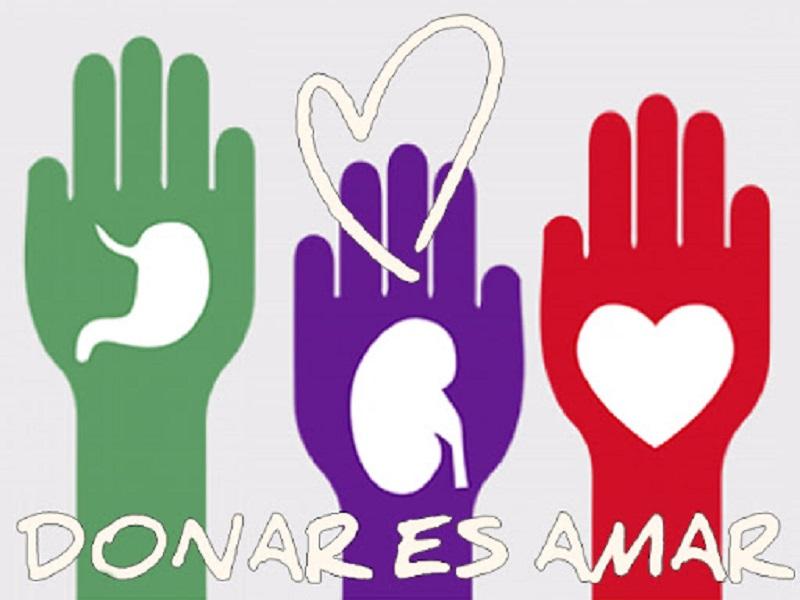 """Alcer Ceuta agradece a los donantes de órganos por """"salvar vidas"""" en el Día Nacional del Donante de ÓrganosBorrador automático"""